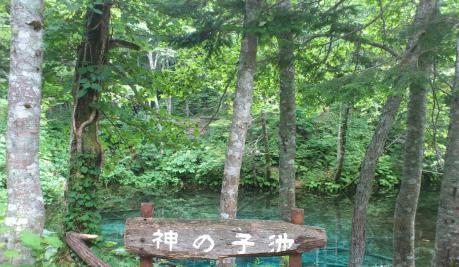神の子池1