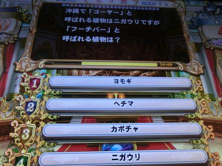 3CIMG4212.jpg