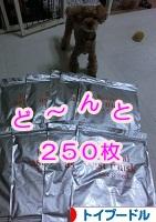 240901.jpg