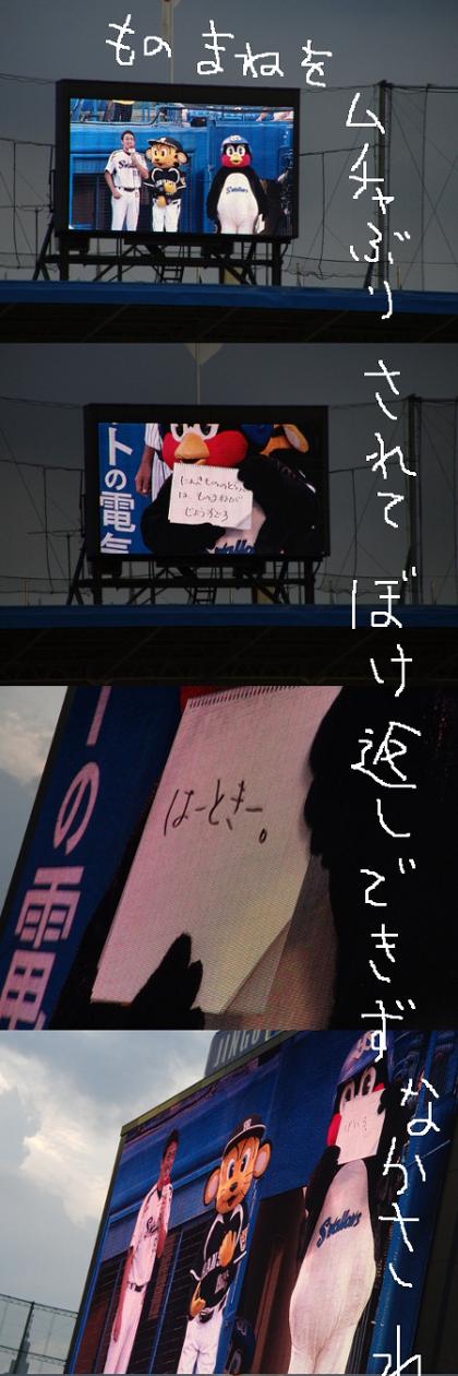 CIMG4621-2-1.jpg