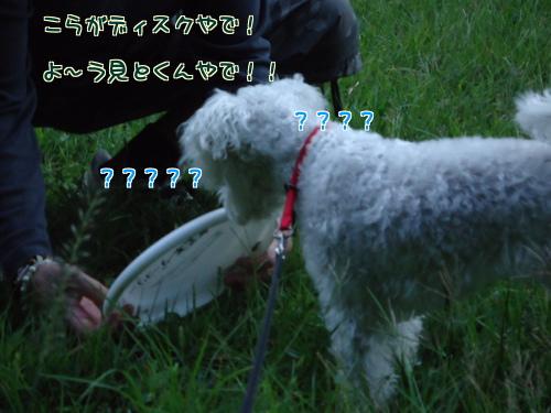 R3TvJsLmyDR16yn_1349695443_20121009074914.jpg