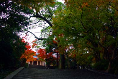 20121121功山寺1ブログ