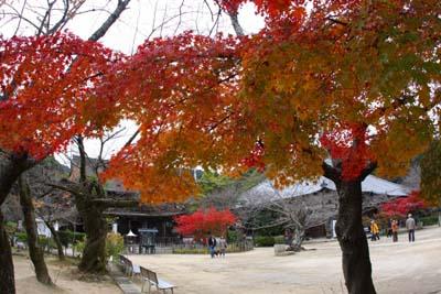 20121121功山寺5.ブログ