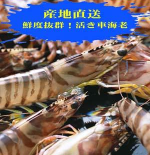 20111015改車海老 ブログ