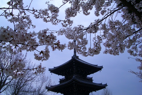 kyouto4.jpg