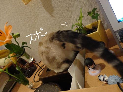 20120521_16.jpg