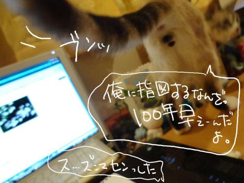 20120806_5.jpg