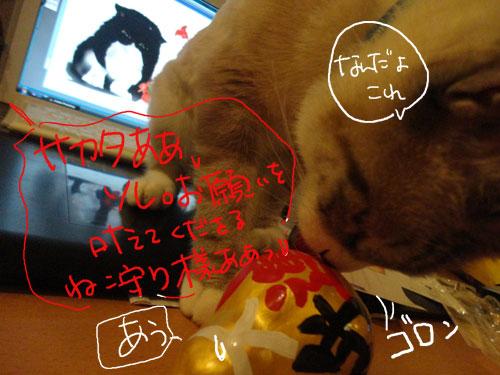 20120807_15.jpg