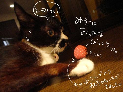 20120807_16.jpg
