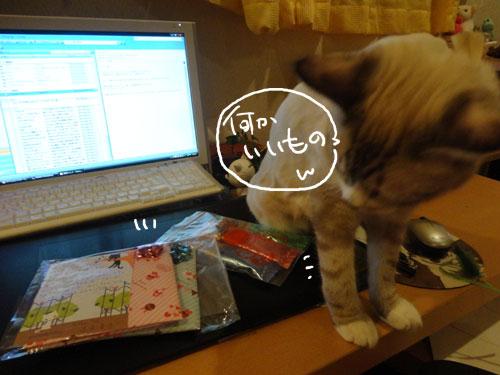 20120811_2.jpg