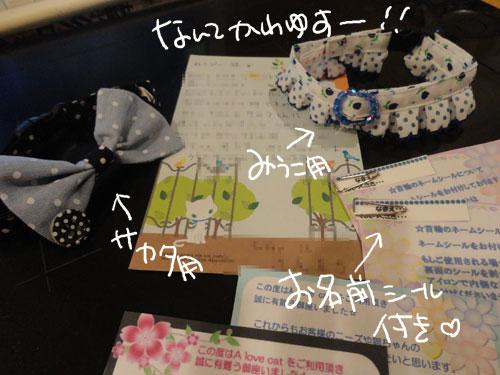 20120811_5.jpg