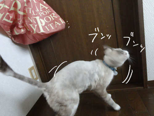 20120816_15.jpg