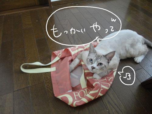 20120816_17.jpg