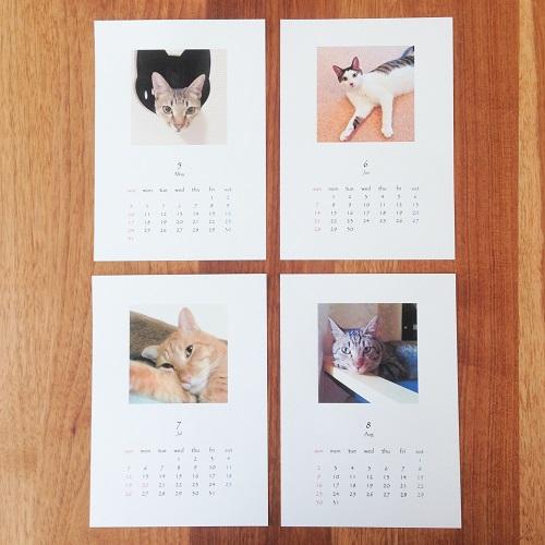calendar20150508.jpg