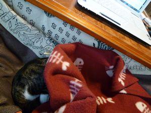 更に毛布をトッピング
