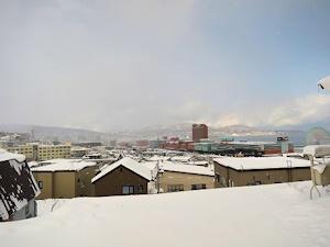 雪が降ってしまった