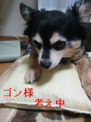 FxCam_1348569531279.jpg
