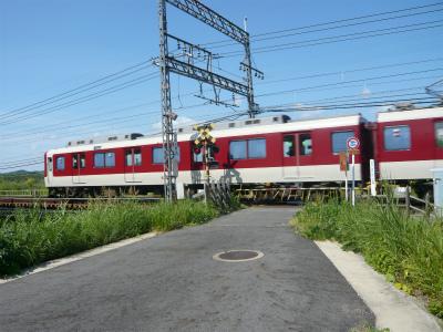P1110603.jpg
