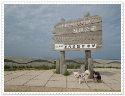 DSCN2446.jpg