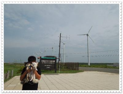 DSCN2458.jpg