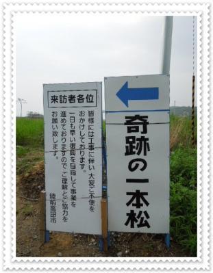 DSCN5969.jpg