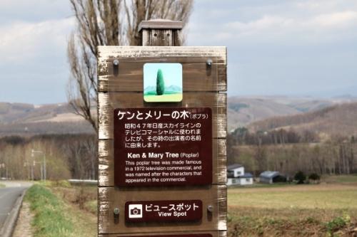 熊野古道伊勢路号4-8