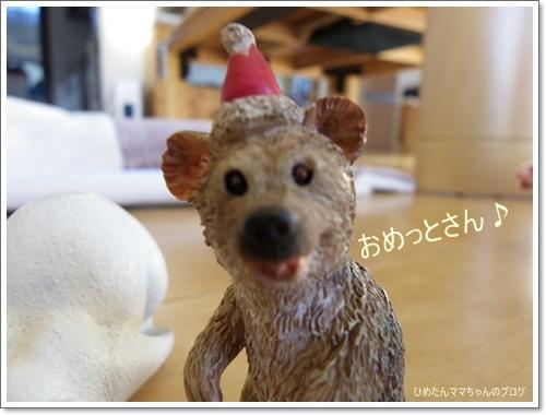 2012 ひめちゃんの日常(12月) 045