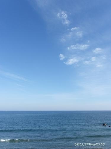 2013 ひめの日常(1月) 092