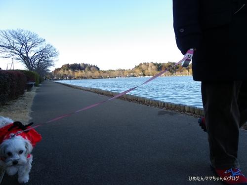 2013 小ドライブ 017
