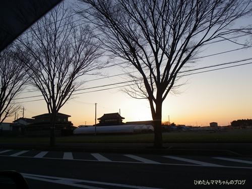 2013 ひめの日常(2月) 002