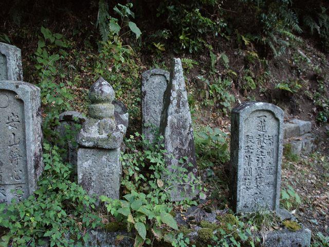 20121109KokusyoS0014s