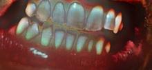 h16歯を剥き出しに220