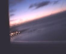 h19機窓から夜明け220