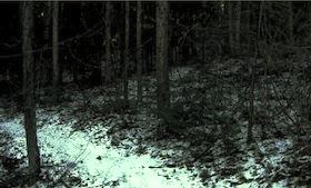 s02眠れる森01全280