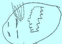 s15ミラレパ真っ青
