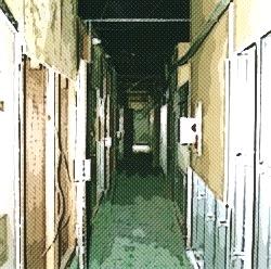 s17修行室