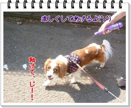 2012052011.jpg