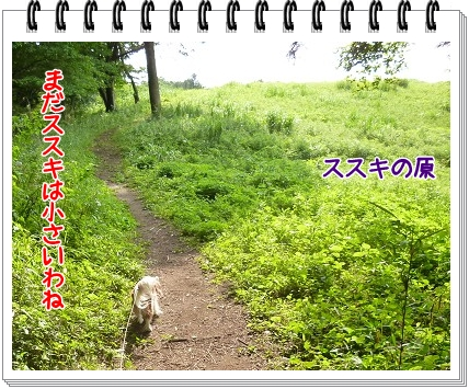 2012052801.jpg