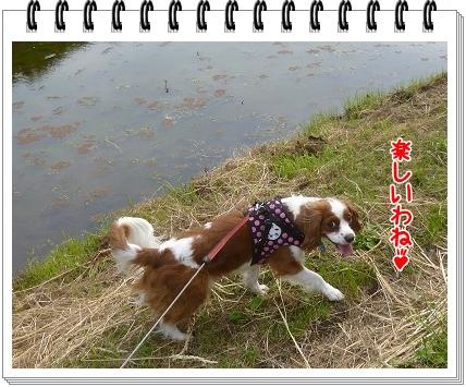 2012052809.jpg