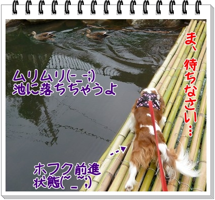 2012062406.jpg