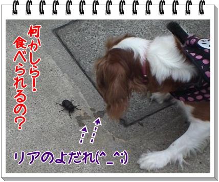2012072201.jpg
