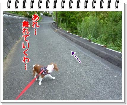 2012081806.jpg