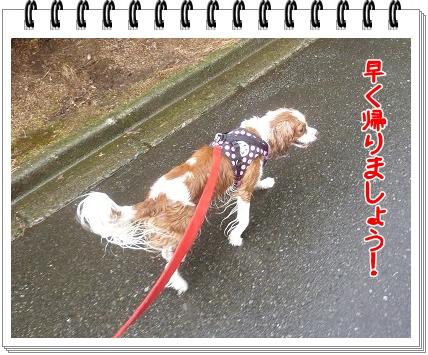 2012090202.jpg