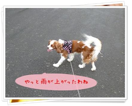 2012100703.jpg