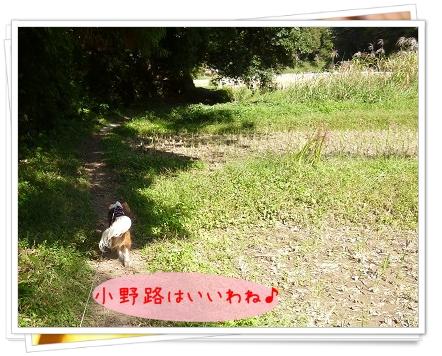 2012101406.jpg