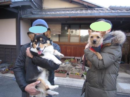 ケイちゃんIMG_3038
