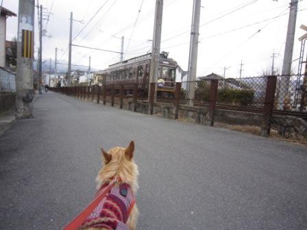 京都IMG_3634