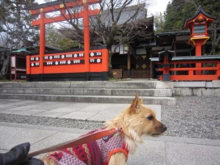 京都IMG_3638