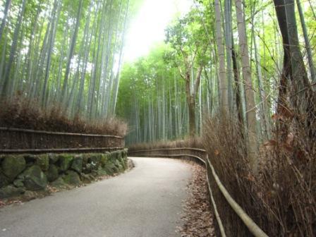 京都IMG_3669 - コピー