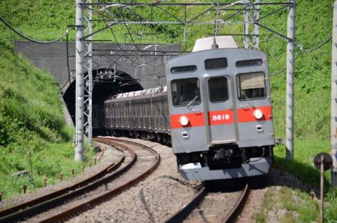DSC_2009.jpg